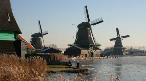 Wonderland in IJmuiden