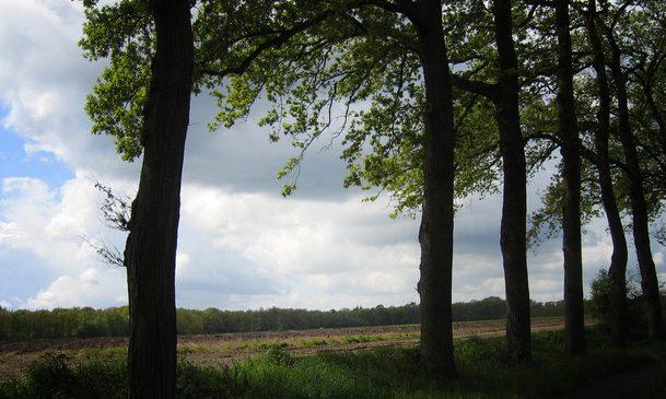 Zwolle – Kringloop voor Red een Kind